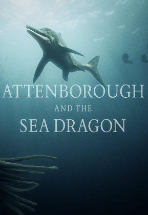 فيلم Attenborough and the Sea Dragon 2018 مترجم